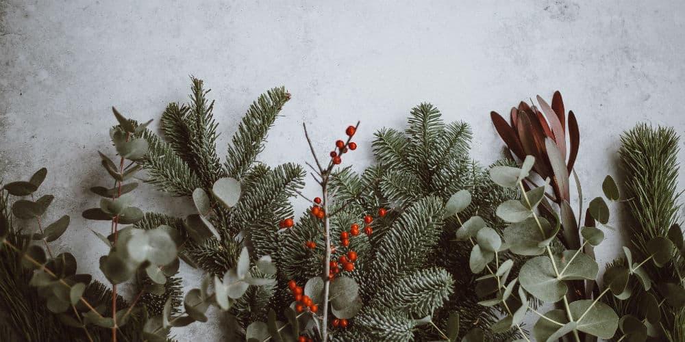 Junkbusters har 10 gode bud på, hvordan vi kan agerer mere miljøvenligt i juletiden